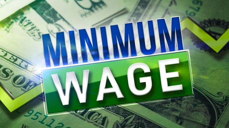 In November, voters will weigh in on Amendment two, which if passed, minimum wage would...