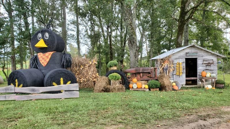 Penton Farms in Verbena is open through the end of October.