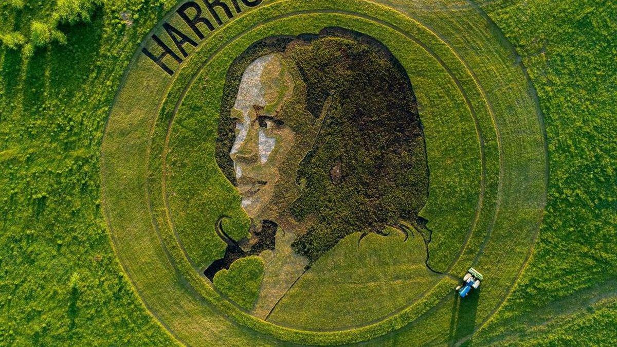 Kamala Harris crop art by Stan Herd in Lawrence, Kansas