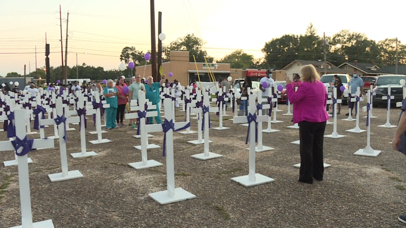 For the month of September, the Wiregrass Angel House showed support for those who have been...