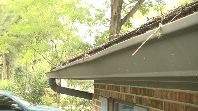 Maintaining your home for hurricane season