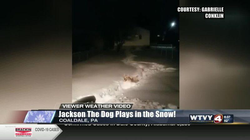 Viewer Weather Video: Jackson enjoys the snow!