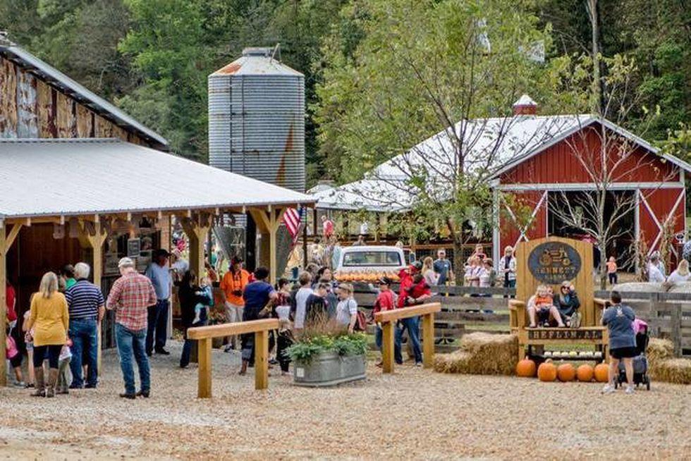 Bennett Farms 1073 County Road 13, Heflin, AL 36264