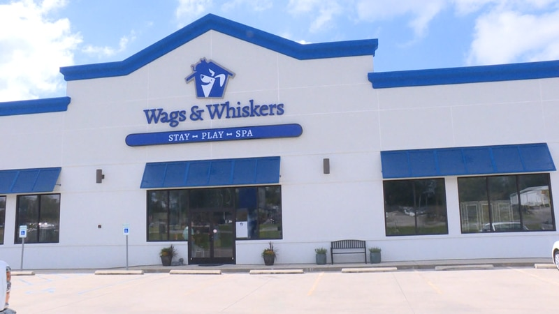 Wags N Whiskers, Dothan
