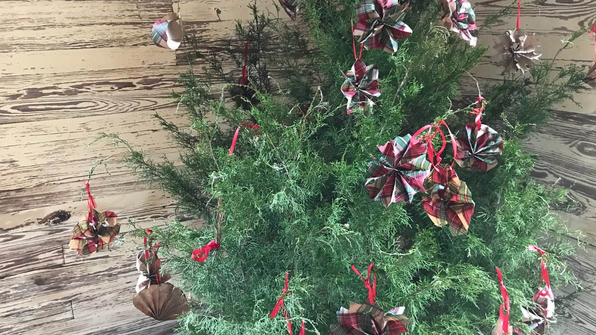 The community Christmas tree inside the school house at Landmark Park.
