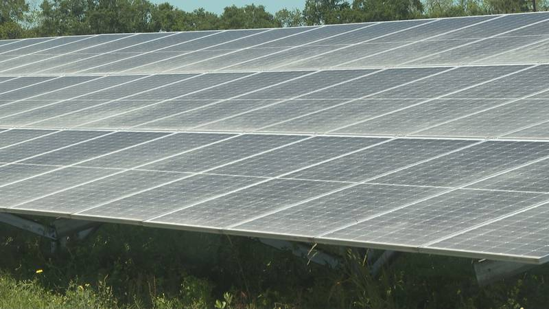 Over the last 10 years, solar farms have been increasing in South Georgia.
