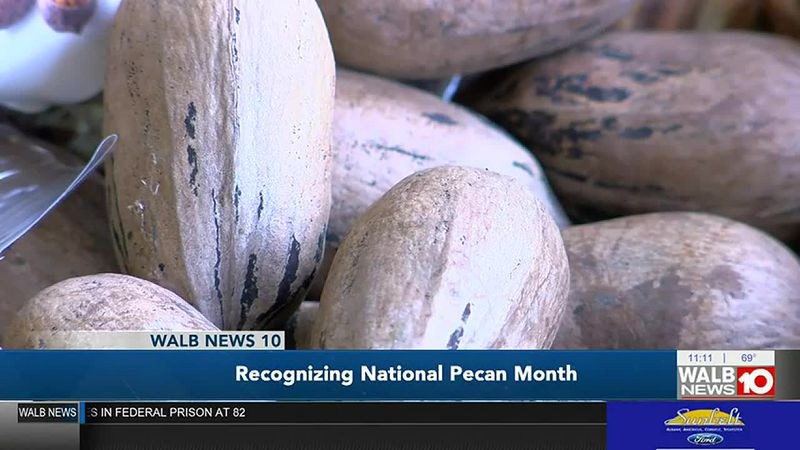 Georgians recognize National Pecan Month