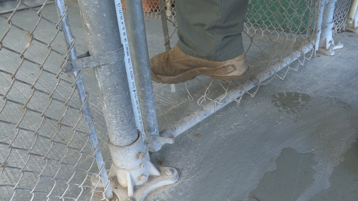 Officials show where two dogs worked their way through to escape a cage at the Dothan Animal...