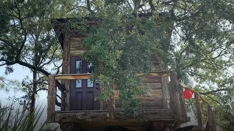 Plewinski says he spent the last part of his deployment researching and designing the tree house.