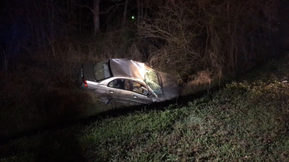 Autothories say the driver tried to avoid a deer on Highway 123 near Pollard's Mill. (WTVY Photo)