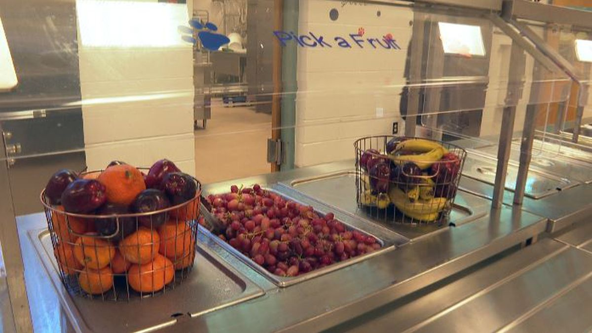 More than half of students in Walton County receive free or reduced cost lunches, according to the school district. (WJHG/WECP)