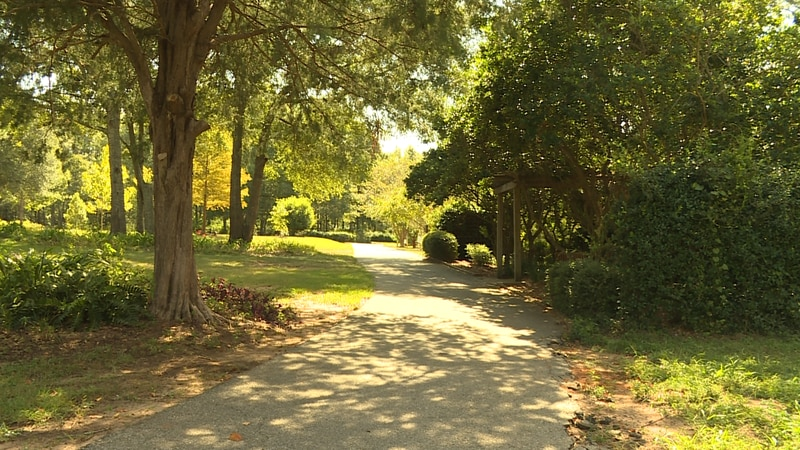 The currently normal-looking pathways at the Dothan Area Botanical Gardens will soon be filled...