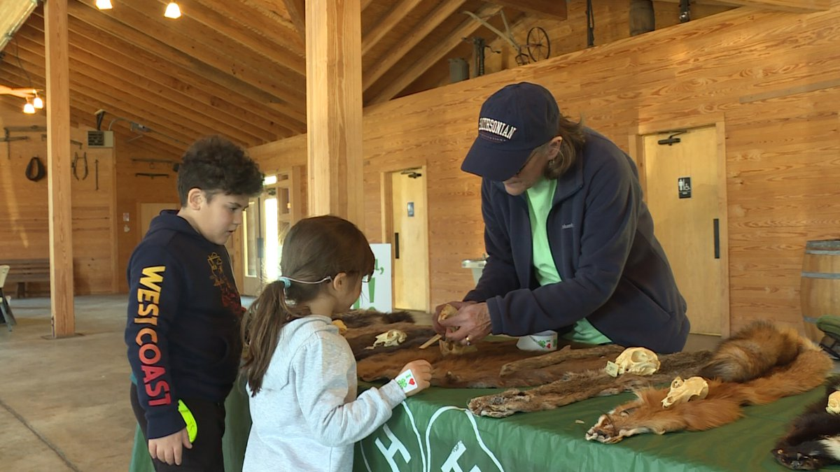 """The """"Skins and Skulls"""" demonstration at Youth Wildlife Day."""