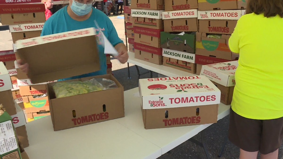 Food boxes at the Mary Hill Service Center for the Farmers to Families Food Box Programs