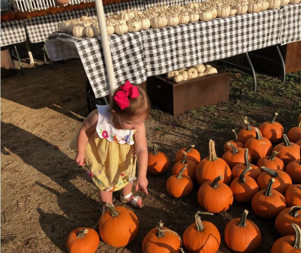 Annual pumpkin patch opens at First United Methodist Church of Dothan