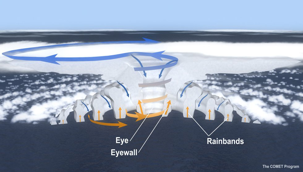 The main parts of a hurricane are the rainbands on its outer edges, the eye, and the eyewall....
