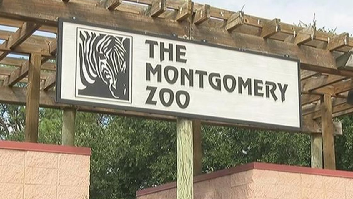 Shots were reportedly fired outside of Montgomery Zoo Sunday