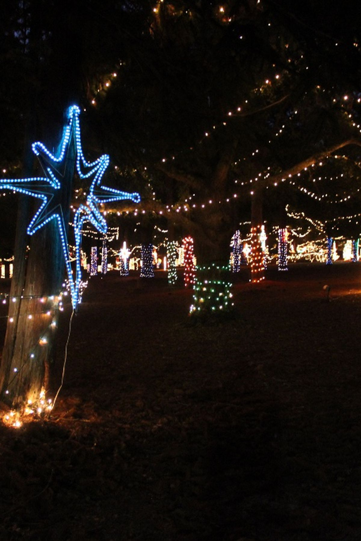 """Defuniak Springs Christmas Reflections 2020 Holiday Movies"""" theme for DeFuniak Springs Christmas Reflections 2019"""