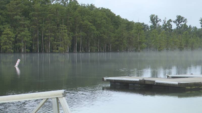 Blue Springs in Marianna can be a good alternative to the beach this summer.