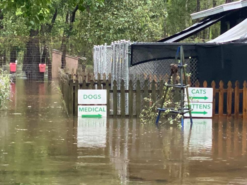 Alaqua Animal Refuge leaders say the water is as deep as two to three feet in some areas of the property.