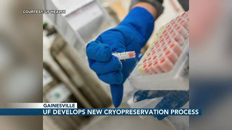 UF researchers develop a new method to freeze lung tissue to study COVID-19